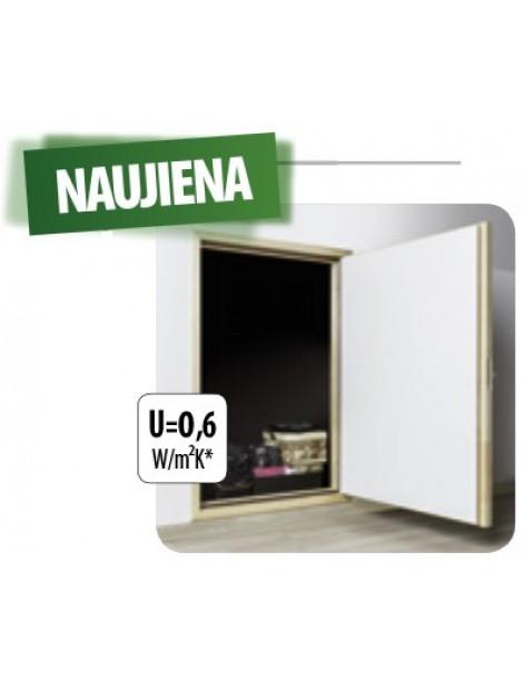 60x110 cm Termoizoliacinės karnizinės durys DWT